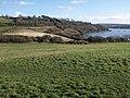 Churchtown Farm Community Nature Reserve - geograph.org.uk - 1191804.jpg
