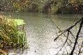 Chuva no rio - panoramio (3).jpg