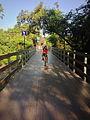 Cicleando puente santay.jpg