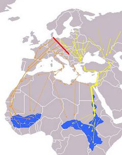 Rutas migratorias europeas/africanas. Línea roja: Límite de migraciónr Líneas naranjas: Rutas occidentales Líneas amarillas: Rutas orientales Azul: Áreas de invernada