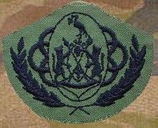 Ciskei Defence Force Warrant Officer Class 1 badge.jpg