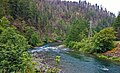 Clackamas Wild and Scenic River (27905358872).jpg