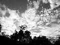 Clouds Oct 2011 to B&W (6269503597).jpg
