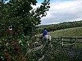 Clwyd Special Riding School, Llanfynydd - geograph.org.uk - 557263.jpg