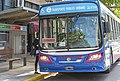 Colectivo Transporte Público en Junín.jpg