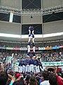 Concurs de Castells 2010 P1310315.JPG