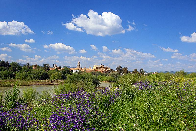 File:Cordoba, Spain (11174798804).jpg
