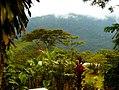 Costa Rica DSCN2286-new2 (31129933325).jpg