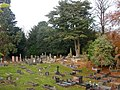 Coventry-London Road Cemetery - geograph.org.uk - 612312.jpg