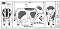 Cow-laboration -77 (7603574078).jpg