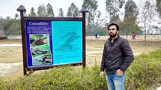 Crocodile enclosure signboard along with detailed classification inside Mini zoo..jpg