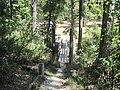 Crowleys Ridge State Park Dancing Rabbit Trail Paragould AR 22.jpg