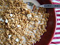 Crunchy Granola with Soygurt Chips (4520423697).jpg