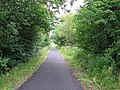 Cycle Path - geograph.org.uk - 35617.jpg