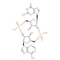 Cyclic Gp(2'-5')Ap(3'-5').png