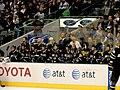 Dallas Stars bench (5341674263).jpg