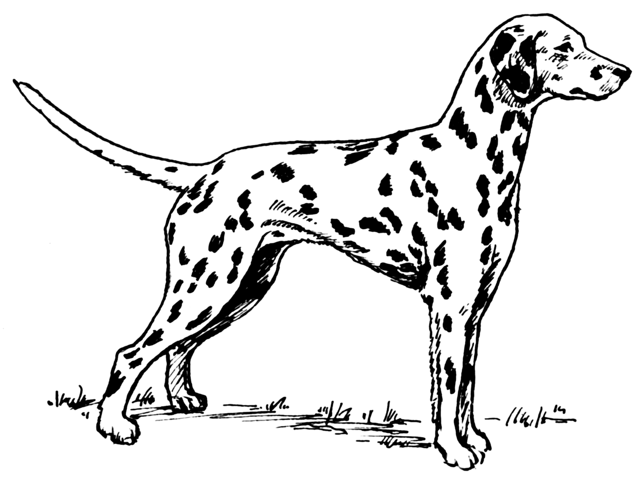 Hunting Printable Coloring Pages