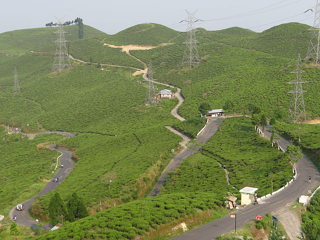 Queen of The Hills Darjeeling - Budget
