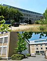 Darmstadt Erasmus-Kittler-Schule Mornewegstraße 20.jpg