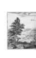 De Merian Electoratus Brandenburgici et Ducatus Pomeraniae 143.png