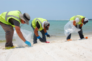 Volume and extent of the Deepwater Horizon oil spill - Workers picking up tar balls from the beach at Pensacola Naval Air Station, Florida.