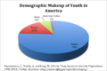 Demographics of Youth in America.png