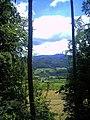 Denzlinger Wald - panoramio (5).jpg