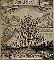 Der Fruchtbringenden Geselschaft Nahmen, Vorhaben, Gemählde und Wörter - nach jedes Einnahme ordentlich in Kupfer gestochen, und in achtzeilige Reimgesetze verfasset (1646) (14560348107).jpg