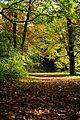 Die Farben des Herbstes - panoramio.jpg