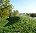 Dieser Radweg führt auf dem Rheindamm entlang. - panoramio.jpg
