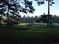Dimineata De Iarna - panoramio.jpg