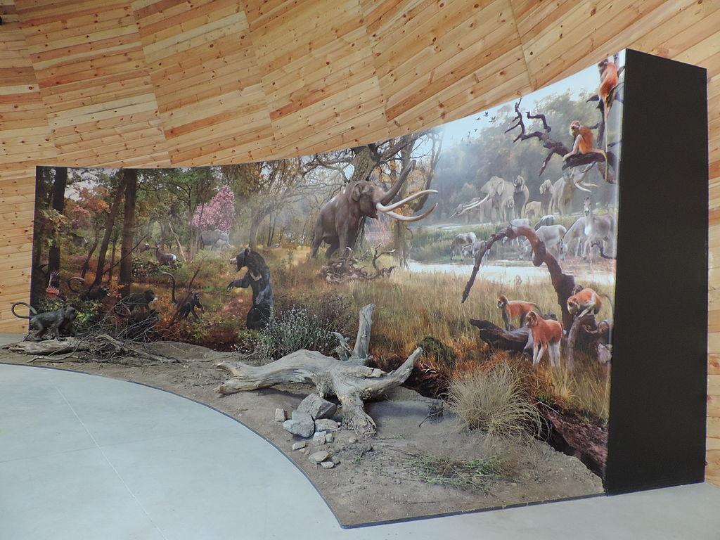 Trophy Rooms With Skip Trowel Walls