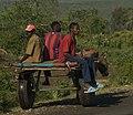 Donkey Cart, Ethiopia 2007.jpg