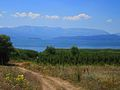 Down road to Prespa lake.jpg