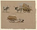 Drawing, Oxcarts, Rome, Italy, January 1873 (CH 18368983).jpg