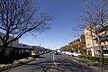 Dubbo NSW 2830, Australia - panoramio (7).jpg
