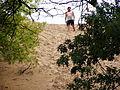 Dune Climb (closed) P6220023.JPG