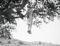 ETH-BIB-Hingerichteter Schwerverbrecher, zur Abschreckung in Baum aufgehängt-Abessinienflug 1934-LBS MH02-22-0595.tif