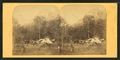Eagle Cliff, White Mountains, from Robert N. Dennis collection of stereoscopic views 2.png