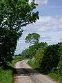 East of Danthorpe - geograph.org.uk - 448120.jpg