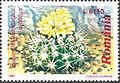 Echinofossulocactus albatus timbru.jpg