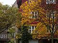 Efeu-bedecktes Haus in der Nassauischen Straße 20141104 2.jpg