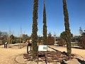 El Manzanares cuenta con un nuevo arboreto y cuatro rutas botánicas, faunísticas e históricas 05.jpg