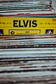 Elvis (Unsplash).jpg