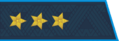 Epaulets Colonel General Air Force of the Russian Federation.png