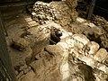 Excavations in the City of David (6388957223).jpg