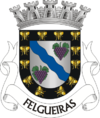 Coat of arms of Felgueiras
