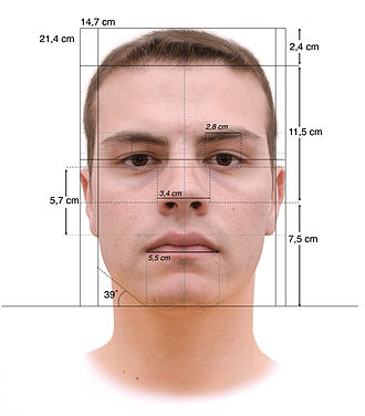 Cesare Lombroso - Face measurements based on Lombroso's criminal anthropology