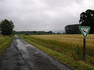 Lübbecke - Large areas of Lübbecke borough are designated nature reserves. Above: north of Stockhausen