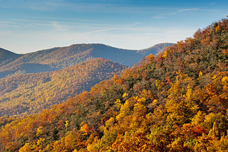 Appalachian-Blue Ridge forests - Fall colors near Asheville, North Carolina.